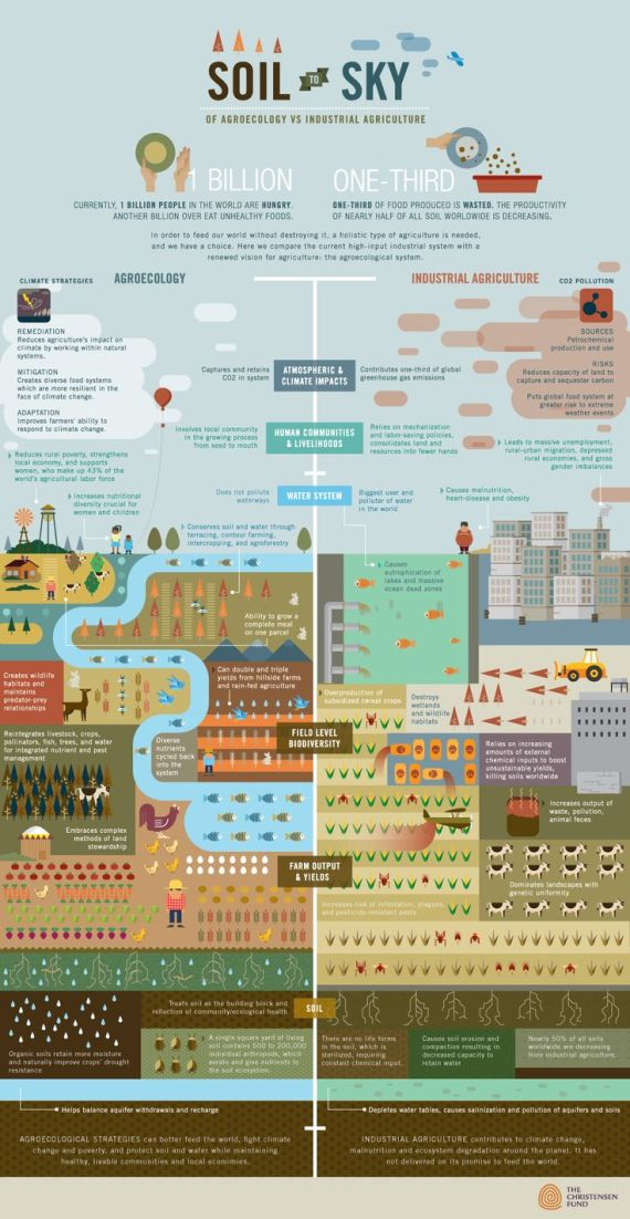 Agroecology VS Industrial Agriculture